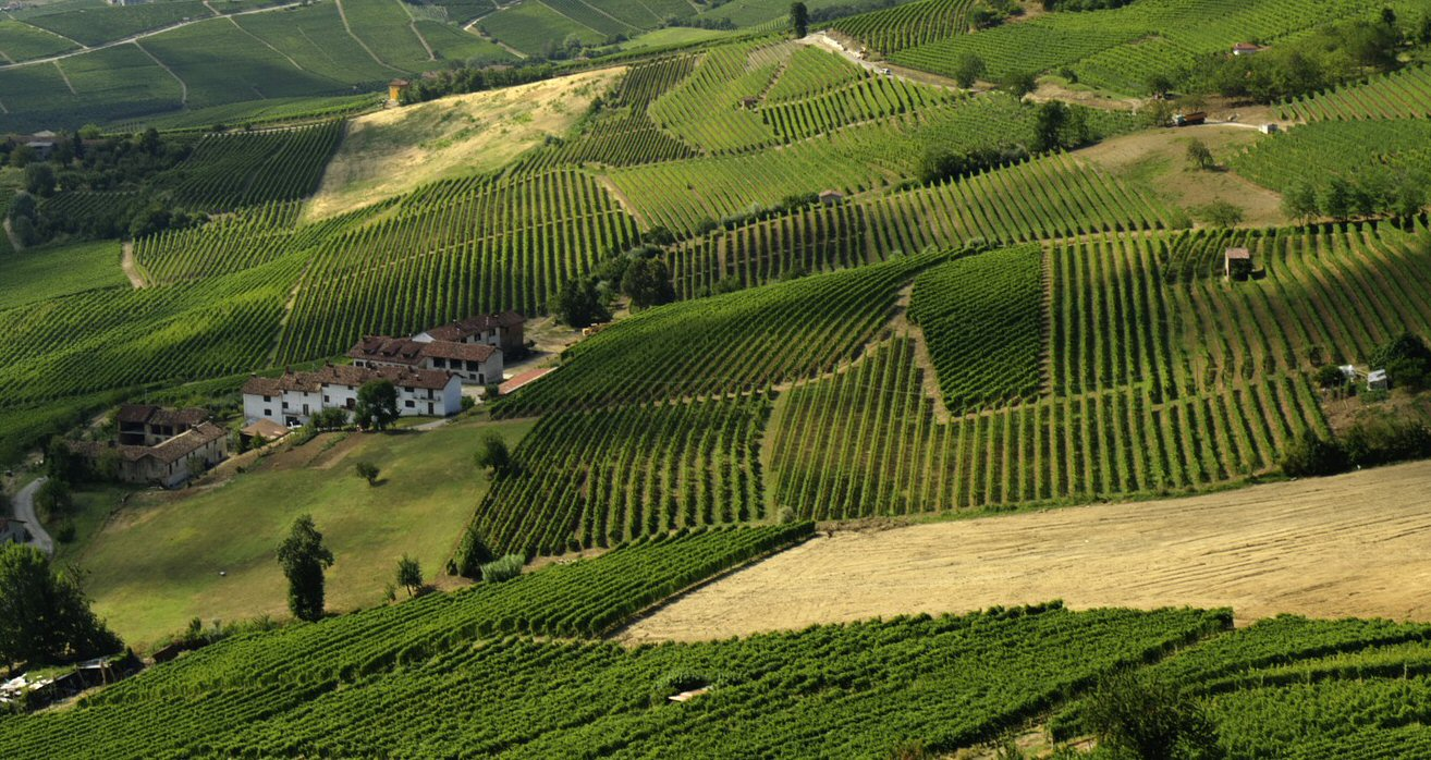 Wine Emporium funders come from <BR>Italian beautiful countryside